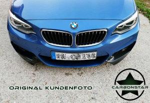 Cstar Carbon Gfk Flaps / Splitter  passend für BMW F22 F23