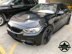 Cstar Gfk Motorhaube GTS passend für BMW F82 F83 M4 M3 F80 CS
